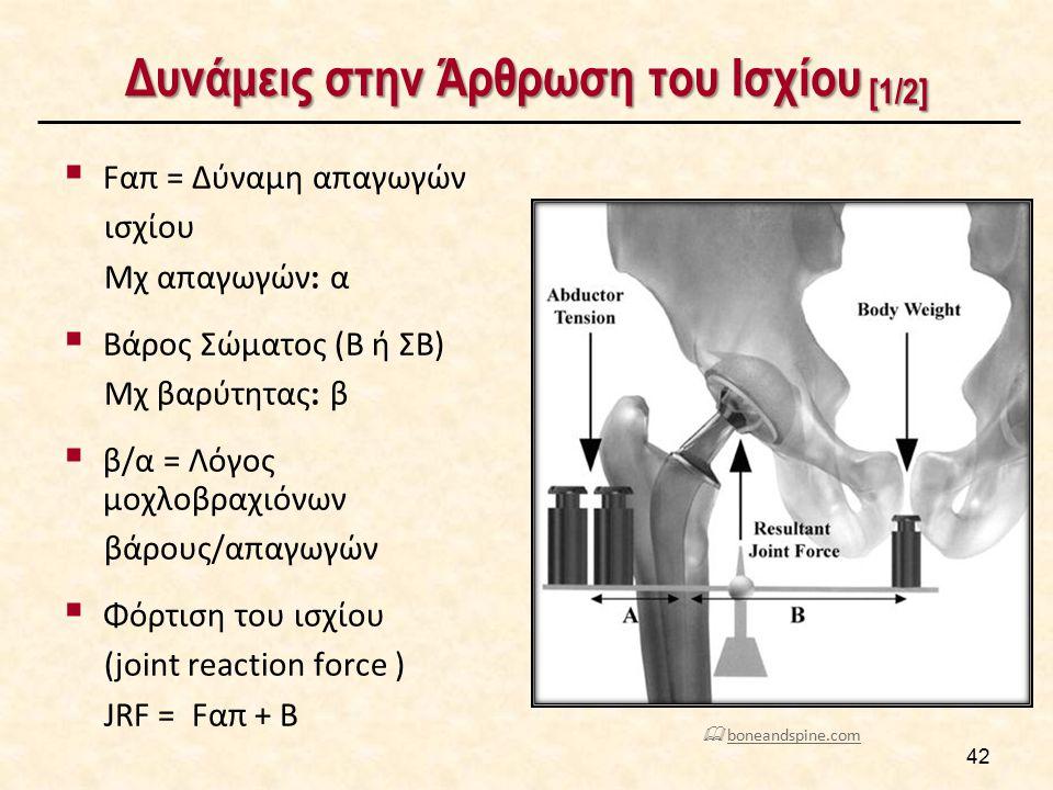 Δυνάμεις στην Άρθρωση του Ισχίου [2/2]